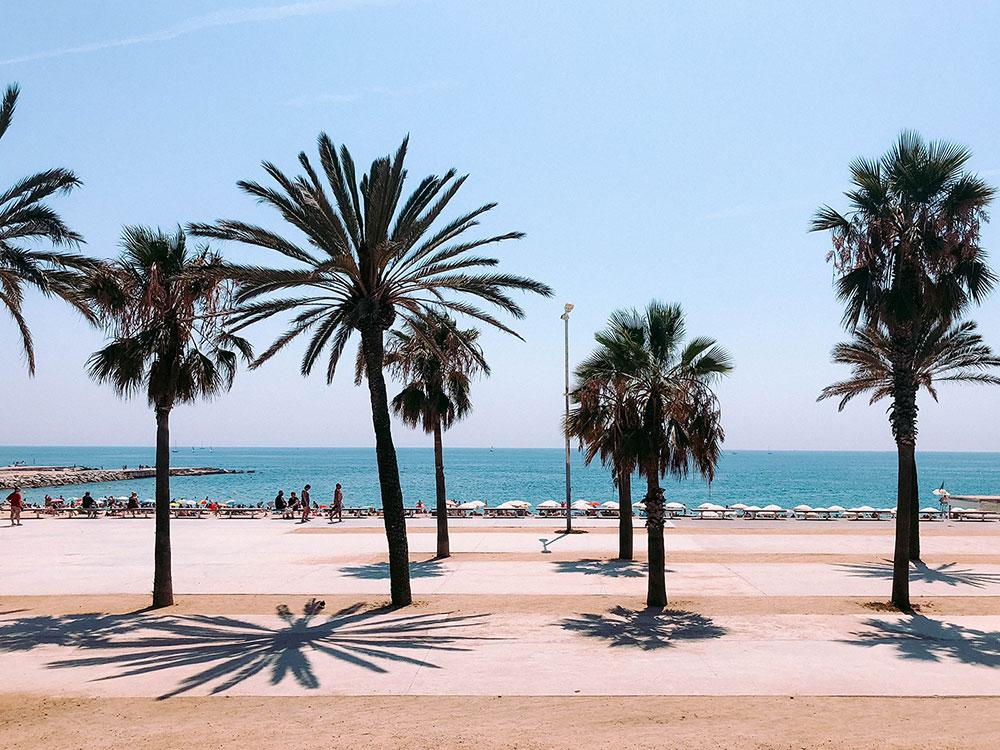 lucrezia-carnelos mar Matiz Barcelona Design Agency